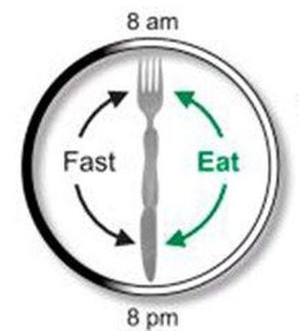 体脂肪を減らす最初のステップ:時間制限のある食事(TRE)